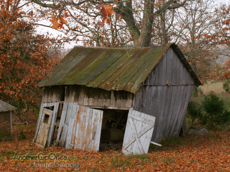 A-run-down-shed