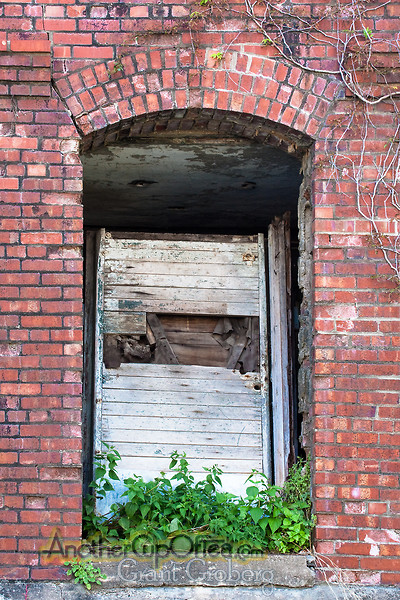 Door in Brick Wall